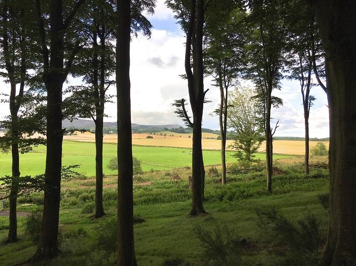 North West Mull Community Woodlands Company Ltd