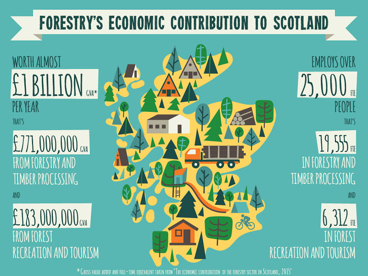 forestry infographic 1