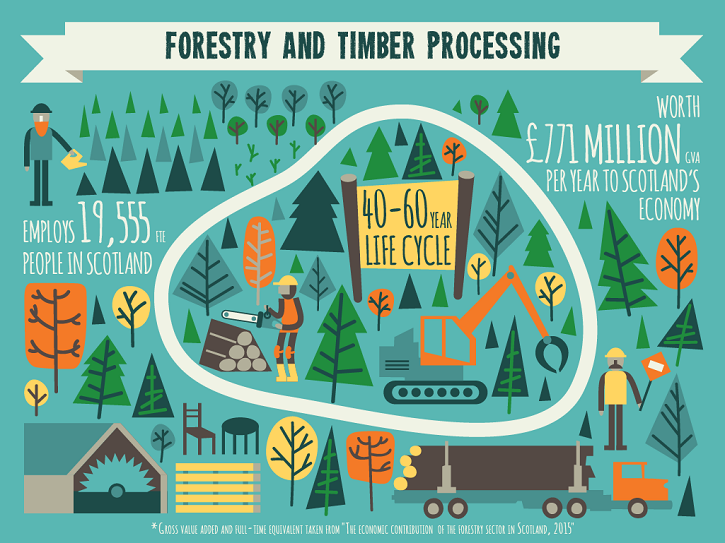 forestry infographic 2