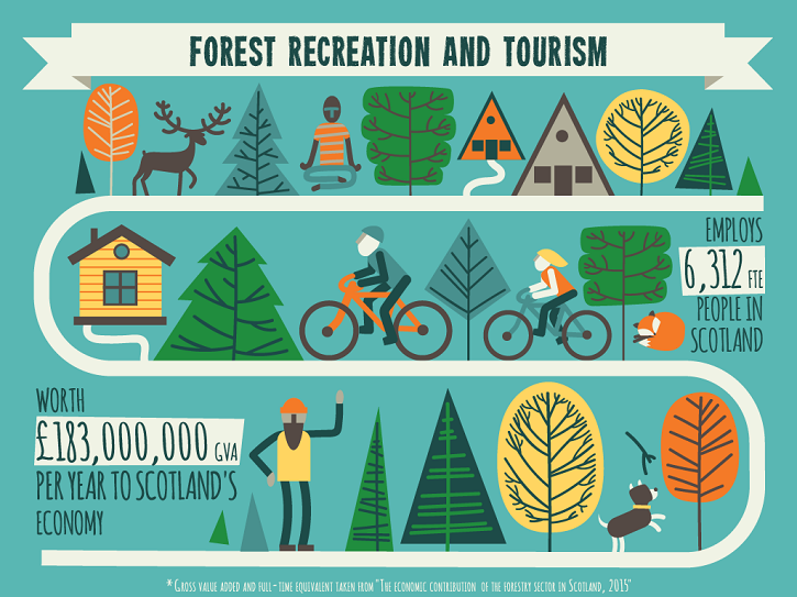forestry infographic 3
