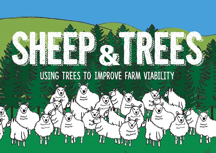 Illustration of sheep and trees