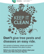 A3 Keep it Clean forest biosecurity poster standard