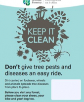A3 Keep it Clean forest biosecurity poster with editable text box