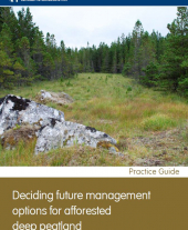 Deciding Future Management Options for Afforested Deep Peatland