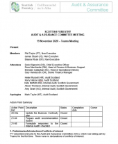 Audit and Assurance Committee Minutes November 2020