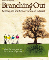 Branching Out Evaluation 2009: Executive Summary