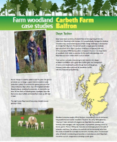 Farm Woodland Case Studies: Carbeth Farm