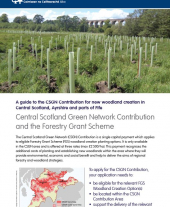 A Guide to the Central Scotland Green Network Contribution for New Woodland Creation