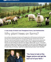 Case Study: Why Plant Trees on Farms?