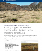 Funding Support for Woodland Creation in the Highland Native Woodland Target Area