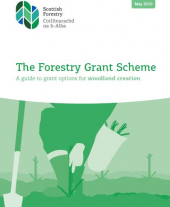 The Forestry Grant Scheme: A Guide to Grant Options for Woodland Creation