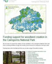 Funding Support for Woodland Creation in the Cairngorms National Park