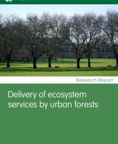 Delivery of Ecosystem Services by Urban Forests