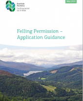 Felling Permission - Application Guidance