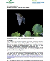 Forest Operations and Bats in Scotland