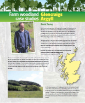 Farm Woodland Case Studies: Glencraigs