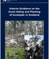 Interim Guidance on the Grant Aiding and Planting of Eucalypts in Scotland
