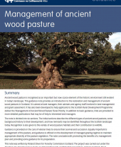 Management of Ancient Wood Pasture