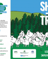 Sheep and Trees Information Leaflet