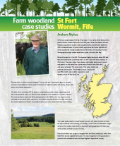 Farm Woodland Case Studies: St Fort