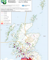 Phytophthora Ramorum Update Map